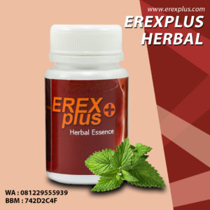 herbal impoten erexplus